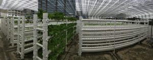 Green Edible Showhouse